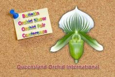 Queensland Orchid Society 2014 February Bulletin, Autumn Show, Queensland International Orchid Fair, World Orchid Conference  https://queenslandorchid.wordpress.com/2014/02/11/queensland-orchid-society-2014-february-bulletin-autumn-show-queensland-international-orchid-fair-world-orchid-conference/