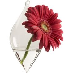 Check out the Teardrop Diamond Hanging Vase in Decorative Accessories, Vases from for Hanging Glass Terrarium, Hanging Vases, Bud Vases, Flower Vases, Flower Arrangements, Glass Vase, Floating Flowers, Floating Candle, All Gifts