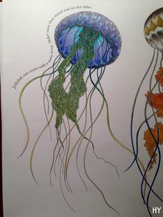 Coloured in the jelly fish from the Animal Kingdom colouring book!