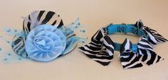 DOG COLLARS CUSTOM ... along with the coordinating Ladies Day Out Hat in Black/White Zebra with a Turquoise Rose.  Contact Zamora.s@verizon.net for sizing, prices and other information.