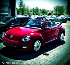 Volkswagen Beetle at our Vindis Bedford Showroom