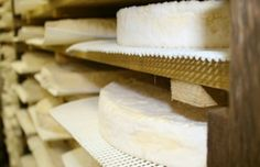 Fromagers - J'aime les fromages de Brie !