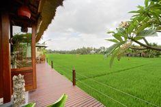 Bali Harmony Villas - stunning rice field views from your private deck!  http://baliharmonyvilla.com/