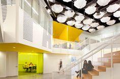 #LA  #herman miller  #aeron  #officechaire  #workplace  #workingspace  #contractinteriors  #officefurniture  #officedesign  #advoffice  #grupogallegos