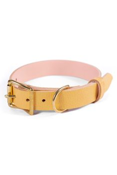 Free Id, Personalized Dog Collars, Leather Apron, Leather Dog Collars, Pastel Yellow, Brass Buckle, Yellow Leather, Pet Stuff, Handmade Leather