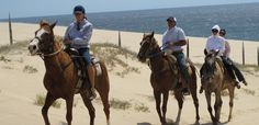 diamante cabo san lucas | Diamante Cabo San Lucas Horseback Riding - Things To Do In Cabo