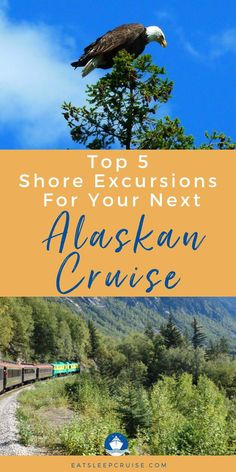 Are you planning a cruise vacation to Alaska? Check out our top picks for shore/port excursions while on an Alaskan cruise! No matter which cruise line you sail (Royal Caribbean, Disney, Princess, Carnival, etc.), these tips will help you plan the best shore excursions in Alaska. From walking on glaciers, flying over the Misty Fjords, to riding a historic narrow-gauge railway, just to name a few. Save this pin to plan your bucket lists adventures with the best Alaska cruise excursions!