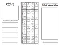 Habitat and adaptations brochures