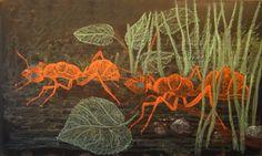 Waldorf ~ 4th grade ~ Human & Animal ~ Ants ~ chalkboard drawing