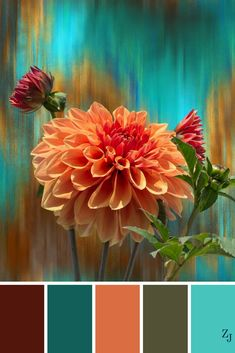 22 Best Color Inspiration Color Inspiration Colour Palettes 12 You are in the right place about indian wedding color palette Here we offer you the most beautiful pictures about the Color Schemes Colour Palettes, Colour Pallette, Color Palate, Color Combos, Blue Palette, Turquoise Color Palettes, Brown Colour Palette, Best Color Combinations, Autumn Color Palette
