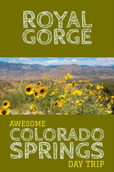 9 Awesome Experiences in Colorado Springs - TRIPS TIPS and TEES Train Rides In Colorado, Road Trip To Colorado, Colorado Hiking, Colorado Mountains, Rocky Mountains, Colorado Springs, Denver Colorado, Colorado House, Snowshoe