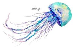 Blue purple and orange jellyfish clipart watercolor for now. Best Picture For Tattoo Pattern hexag Jellyfish Drawing, Watercolor Jellyfish, Jellyfish Painting, Jellyfish Tattoo, Watercolor Tattoo, Jellyfish Quotes, Jellyfish Facts, Jellyfish Tank, Jellyfish Light