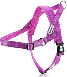 DEXDOG EZHarness No Pull Reflective Mesh Adjustable Dog Harness XLarge Purple * You can get more details by clicking on the image.Note:It is affiliate link to Amazon.