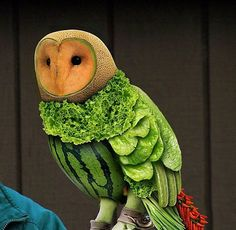 A fruit and veg owl! That's right, an owl made entirely of fruit and vegetables! creative food culinary Plus L'art Du Fruit, Fruit Art, Fruit Salad, Fresh Fruit, Eat Fruit, Fruit Cakes, Fruit Sculptures, Food Sculpture, Animal Sculptures