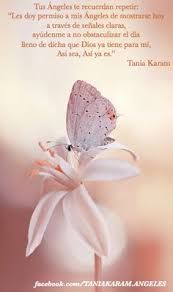 Resultado de imagen para tania karam Tania Karam, Angel Quotes, Mother Nature, Pretty In Pink, Reiki, In This Moment, Beautiful, Salvador, Pantone
