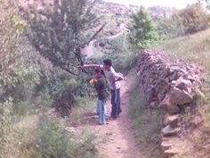 Vacances en Kabylie, quels plaisirs ! - Archives 1997-2007 Kabyle