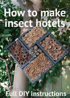 How to make your own insect hotels from recycled materials! A handy step-by-step guide to making bug houses for solitary bees, ladybirds and lacewings Bug Hotel, Garden Crafts, Garden Projects, Bug Crafts, Garden Ideas, Diy Projects, Bug Houses For Kids, Plan Hotel, Insect Box