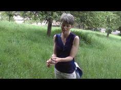 Wildkräuterwanderung mit Andrea Nossem in Freiburg - YouTube