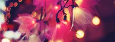 flowers blinking lights Facebook Cover Photo