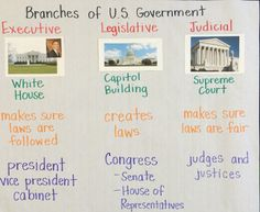 Branches of government anchor chart