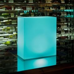 Kong LED Indoor/Outdoor Lamp by Smart
