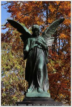 Alter Nordfriedhof   Old Northern Cemetery   Flickr - Photo Sharing!