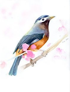 "Original watercolor painting, bird painting handmade, 8""x10"" animal watercolor wall art. Original watercolor painting, Bird flower painting by Tina Zhou. Afrodable great original watercolor painting. It is good gift for your friend and some one special for you or decorate your wall greatly. Out frame don't include. About The Shipping: It will be safely wrapped and come flat to your home, ready for framing. Generally,10-15 days arrive to your place via DHL, USPS, FEDEX, EMS. ."