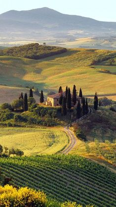 The beautiful hills of the Toscana (Tuscany) region of Italy Places To Travel, Places To See, Travel Destinations, Beautiful World, Beautiful Places, Beautiful Scenery, Beautiful Farm, House Beautiful, Summer Landscape