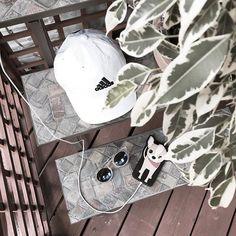 #sunglasses #case #iphonecase #adidas #cap #plant #dog #tumblrphoto #tumblrpost #tumblrinstagram #przegladinstagrama #fajnyprogram