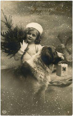 Christmas Girl with Dog Photo