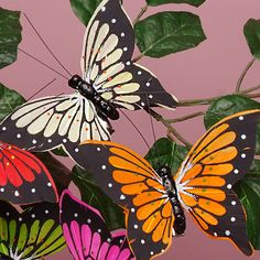 4 X 2 3/4 Colored Swallowtail Butterfly Decor