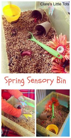 Bedside Play: Fun Spring Sensory Bin for toddlers and preschoolers. Let little hands explore this spring sensory play idea using bird seeds. Great of imaginative play and messy play. Sensory Tubs, Sensory Boxes, Sensory Activities, Infant Activities, Activities For Kids, Sensory Play, Halloween Activities, Activity Ideas, Outdoor Activities