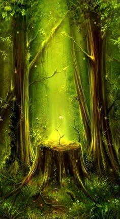 Luz da vida