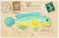 Geninne's Art Blog: May 2009 - more than one fish pic!!