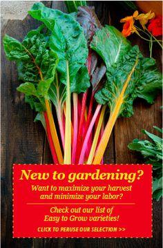 High Mowing Organic Seeds - 100% Organic, Non-GMO Seeds Straw Bale Gardening, Gardening Tips, Sustainable Gardening, Organic Gardening, Organic Farming, Organic Seeds, Grow Organic, Edible Garden, Garden Fun