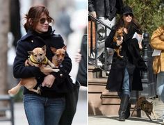 Sandra Bullock & two of her three rescued pups, all special needs dogs. Image via Celebrities and their Rescue Dogs