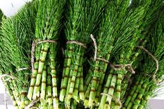 Horsetail herb is a powerful plant that prevents Alzheimer's and dementia by removing heavy metals from the body. Here is how to use horsetail herb. Herbs For Hair Growth, Quick Hair Growth, Natural Herbs, Natural Health, Au Natural, Edible Wild Plants, Alzheimer's And Dementia, Wild Edibles, Medicinal Plants