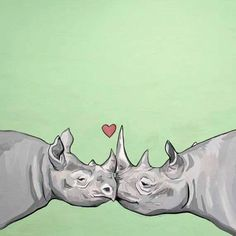 """""""No one in the world needs a Rhino Horn but a Rhino"""""""