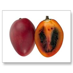 Exotic Fruit Tamarillos Post Card