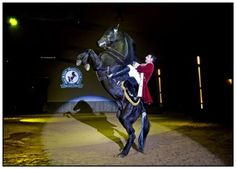 Menorca Show horse rearing at Son Martorellet Riding Display Solo Travel, Time Travel, Places To Travel, Travel Destinations, Horse Rearing, Balearic Islands, Travel Channel, Dance Photos, Menorca