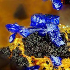 Azurite | #Geology #GeologyPage #Mineral Locality: Daniel Adit, Leogang, Salzburg, Austria Size: 1.3 × 1 × 0.8 cm Photo Copyright © Joy Desor Mineralanalytik /e-rocks.com Geology Page www.geologypage.com