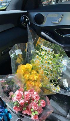 My Flower, Beautiful Flowers, Rosa Rose, No Rain, Flower Aesthetic, Aesthetic Makeup, Aesthetic Pictures, Bunt, Mother Nature
