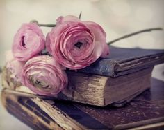 Old books with Ranunculus