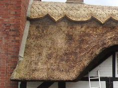S M Master Thatchers | Thatchers | Thatching | Thatched Roof | Water Reed | Thatch Patching | Netting | Re-Thathing