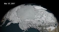 Record-Low Ice Confirmed at North and South Poles