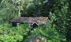 Natuurhuisje 26071 - vakantiehuis in Emst