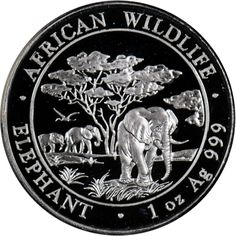 2012 Somalia 100 Shillings Silver Elephant 1 oz BU