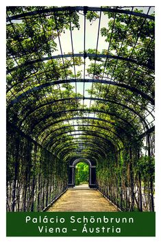 Free Image on Pixabay - Garden, Schönbrunn, Austria, Vienna Travel Europe Cheap, Europe Travel Guide, European Travel, Places To Travel, Travel Destinations, Places To Visit, Travel Stuff, Solo Travel, Travel Usa