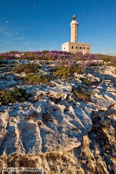 Lighthouse of Vieste by Steffen Springstein, via 500px