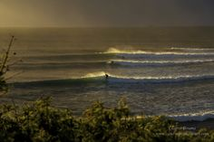 Wollongong, NSW sandonpointphotos  http://www.sandonpointphotos.com